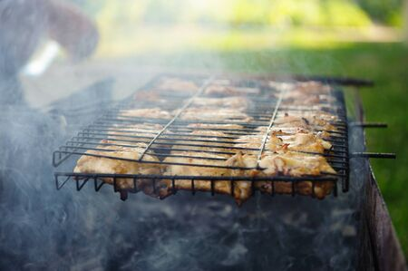 grates: Juicy chicken meat in grates and smoke during barbecue