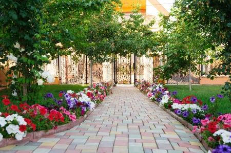 Kleurrijke bakstenen voetpad met bloemen in de achtertuin Stockfoto