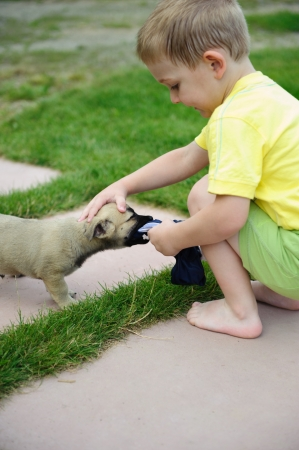 Little boy playing with his cute dog in green grass photo