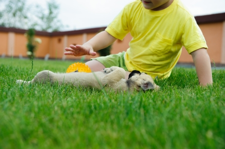 child ball: Little boy playing with his cute dog in green grass