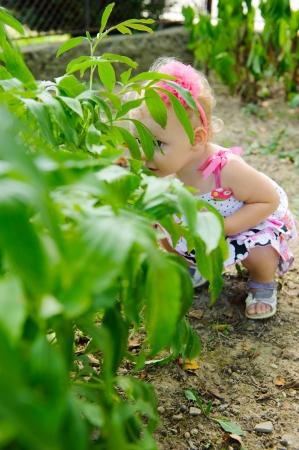florecitas: Niña que se esconde en el arbusto verde
