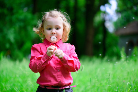 Cute little girl blowing dandelion in park Stock Photo - 29038785
