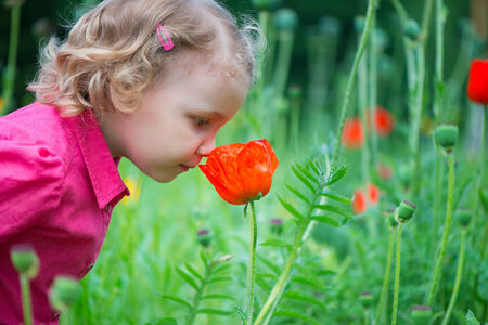 Little curly hair girl sniffing red poppies Stock Photo - 29038788