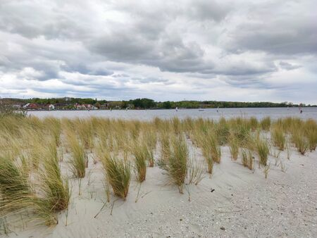 Photo of dunes and white sand beach at German shore of Baltic sea