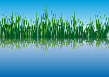 waterside: Abstract vector of a waterside Illustration