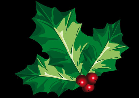 Abstract vector illustration of holly leafs over a black background Vector