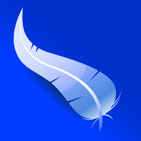 bristles: Abstract vector illustration of a soft feather over a blue background