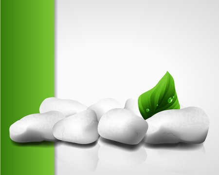 Vector illustration of white rocks and a fresh green leaf Vector