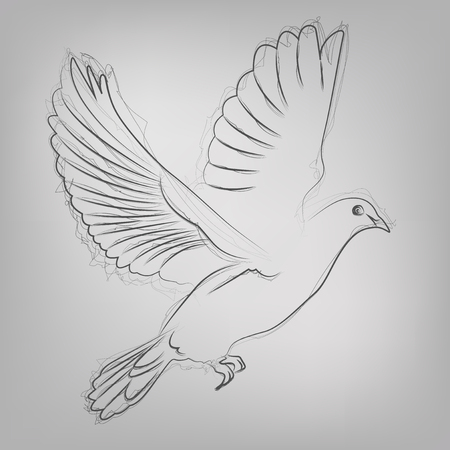 orthodox: Abstract vector illustration of a sketched dove