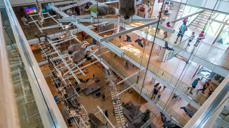 Trento 2019. Main room of the Science Museum, or MUSE. We are on a hot summer day and the museum is a destination for hundreds of tourists a day. August 2019 Trento Editorial