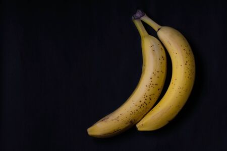 Ugly fruit. Two spoiled yellow bananas with brown dots on a black background. Ugly bananas decompose. Stock Photo