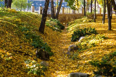Colorful yellow and green foliage in autumn Park with trees and stone bridge. Autumn bright landscape.