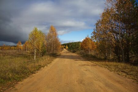 Autumn beautiful landscape. Road in the countryside against yellowed trees and cloudy blue sky on a Sunny day. 免版税图像