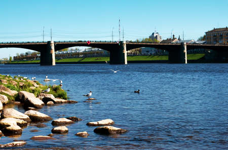 TVER, Russia, May 2021: View of the Novovolzhsky Bridge on the Volga River from the Afanasy Nikitin Embankment in Tver. Seagull on the bank of the Volga river on the background of the bridge.