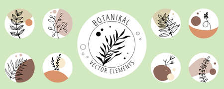 Collection of vector botanical icons for the brand. Hand-drawn vector trend set of botanical logos. Flower templates of leaves and branches for your brand.