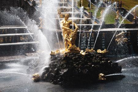 St. Petersburg, Russia, July 2021: Samson Fountain in Peterhof.