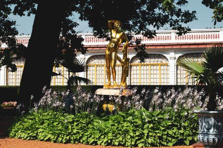 Saint Petersburg, Russia, July 2021: Apollo Fountain in Peterhof near the Monplaisir Palace 新闻类图片