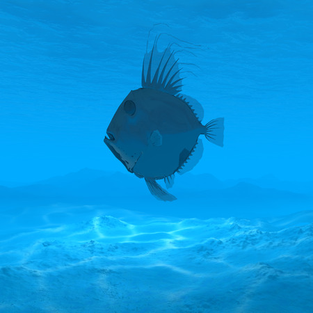 silhouette fish underwater with caustic 3d rendering stock photo