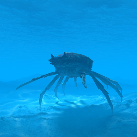 silhouette crab underwater with caustic 3d renderingsilhouette shark underwater with caustic 3d rendering Stock Photo