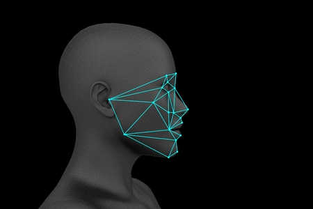 biometric profile face recognition without hair. 3d rendering