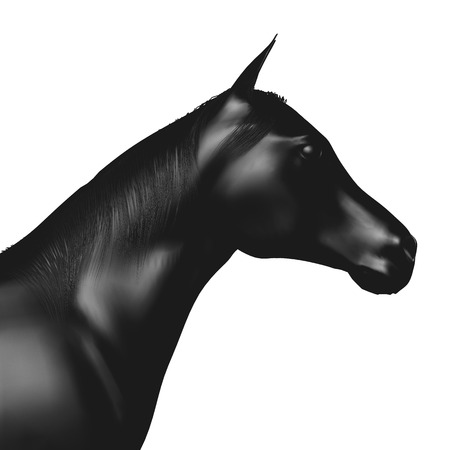 Horse head profile in black isolated on white. 3d rendering