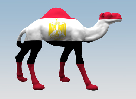 camel is painted flag of Egypt. 3d rendering