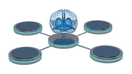 front view of the brain x-ray with four mock up pedestals around. 3d rendering