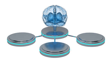 front view of the brain x-ray with three mock up pedestals around. 3d rendering