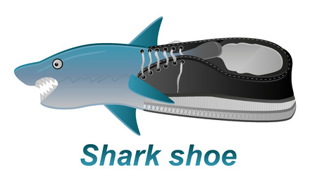 plimsolls: Vector illustration of shoe with shark