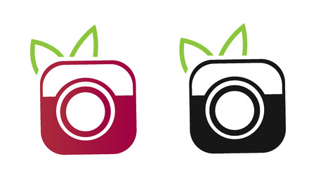 Nature photography symbol - camera with leaves - vector icon