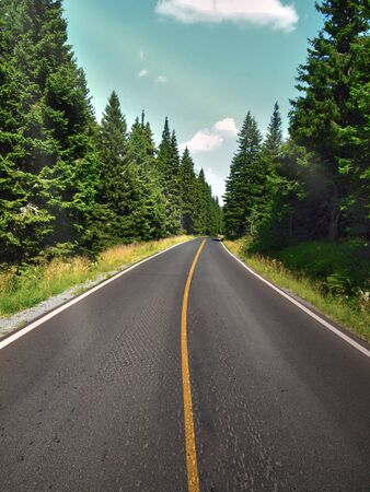 Summer road through the forest in the beautiful countryside with clear sky. Nice road with yellow stripe in the forest or mountains.