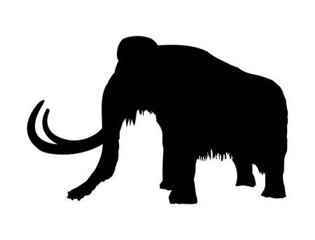 Vector black silhouette of a prehistoric wooly mammoth with tusks isolated on a white background stock illustration. Prehistoric elephant and mammal. Extinct huge animal. Çizim