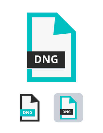 Dng file flat vector icon. Standardized professional photo raw format. Symbol of DNG camera file for pictures, photos and images isolated on a white background.