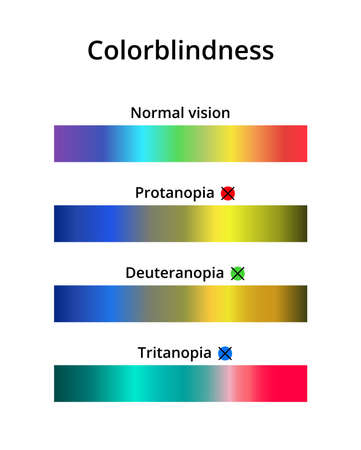 Vector illustration of color blindness or colorblindness. Normal vision, protanopia, tritanopia and deuteranopia. Color vision deficiency spectrum. Decreased ability to see color. Isolated on white.