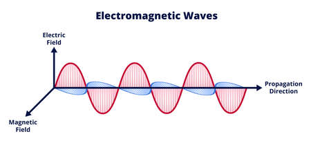 Vector scientific illustration of electromagnetic wave consisting of electric and magnetic fields and propagation isolated on a white background. Wavelength, amplitude, frequency. Radio waves, light.