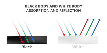 Vector scientific illustration of light absorption and light reflection isolated on white. Black and white surfaces, black body, blackbody and white body, whitebody. Physics color theory explanation.