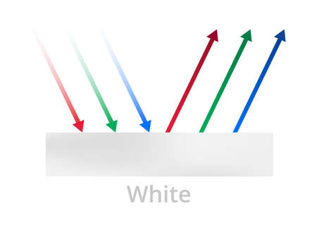 Vector illustration of light reflection, white color, white ink, or surface isolated on a white background. All incident rays are reflected. Physics color theory explanation. White body, whitebody.