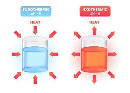 Endothermic and exothermic reactions. Types of chemical reactions, exo, endo, heat. Increase and decrease in the enthalpy H. Closed system absorbs or releases thermal energy. The icons are isolated.