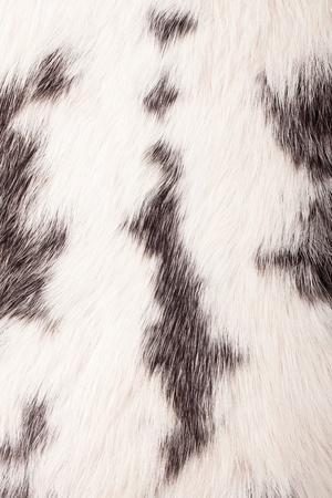 Detail of rabbit fur