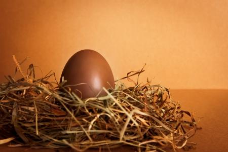 Oeuf de chocolat de P�ques dans le nid d'un oiseau Banque d'images