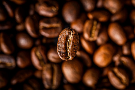 Closeup of coffee beans with focus on one Reklamní fotografie