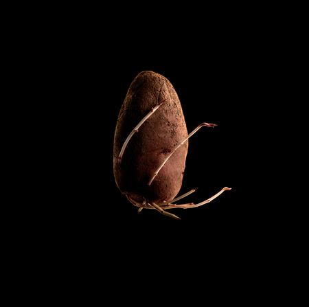 potatoes on a black background