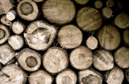 mound: mound of wood Stock Photo
