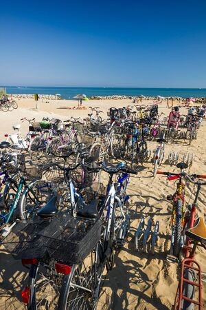 ble: A lot of bicycles near the sea, sunny day, ble sky