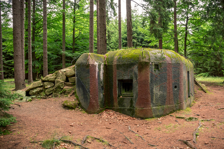 Getarnter Bunker WWII im dunklen Wald Standard-Bild