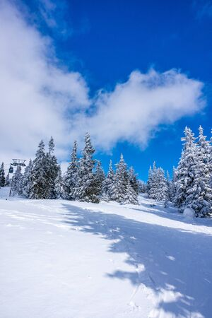 Krkonose mountains covered with snow, frozen trees. The highest peak Snezka in the background. Blue sky with white clouds in sunny day in March. Foto de archivo