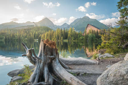 Mountain lake Strbske Pleso with big stump in the foreground in National Park High Tatras. Slovakia, Europe. Late summer evening at lakeside.