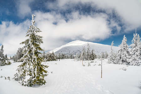 View to a hiking trail which leads to a summit of Snezka mountain, the highest Czech mountain. Located on a border with Poland. Winter picture of Krkonose national park.