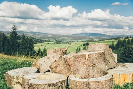 carpathians: Large wooden logs in Carpathians forest