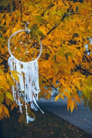 round: white dreamcatcher on autumn tree
